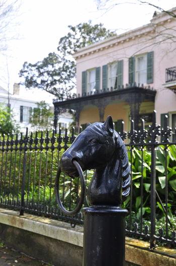 Building Exterior Garden Decor Garden District Horse Parade New Orleans Outdoors Statue USA