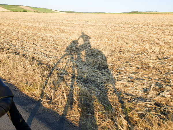 Adventure By Bike Bike Trip Shadowplay Shadows & Lights Travel Photography Agriculture Beauty In Nature Bike Packing Bike Touring Cereal Plant Day Field Landscape Leisure Activity Lifestyles Mammal Men Nature One Person Outdoors People Rural Scene Shadow Sunlight Wilderness Adventure