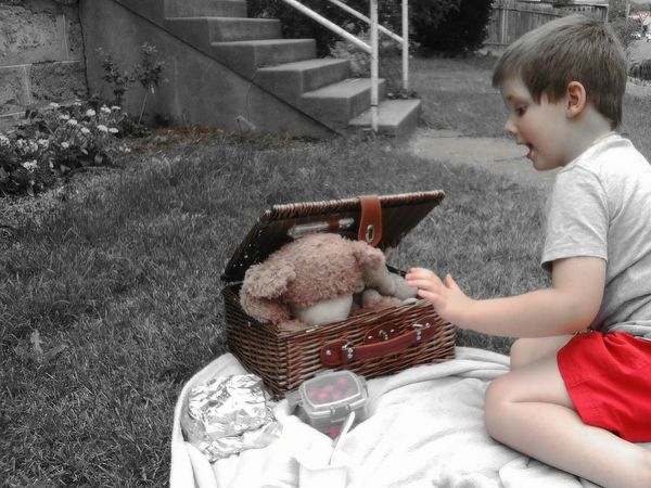 No more food Teddy, you have had too much!!! Childhood Child Children Only Casual Clothing Looking Down One Person People Outdoors Day Teddy Bears Nature On Your Doorstep Adapted To The City Low Angle View Day Photography Fun, Outdoors From My Point Of View. Different Colours And Shades Garden Photography Picnic Lunch Black And White Photography Black And White With A Splash Of Colour Stuffed Toys Drastic Edit Man Made Object