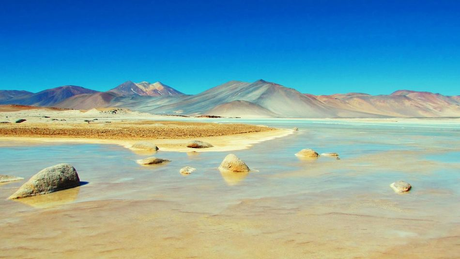 Salar del Talar. San Pedro de Atacama First Eyeem Photo