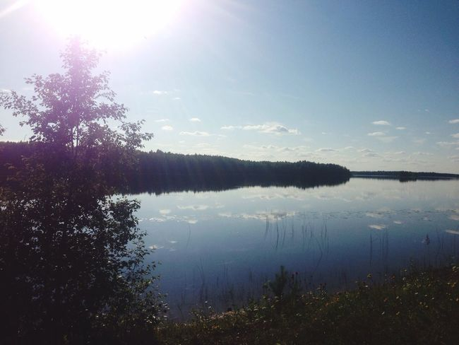 Summer ☀ River