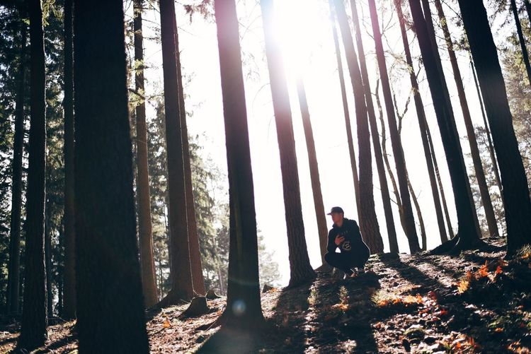 Man sitting on ground amidst forest trees