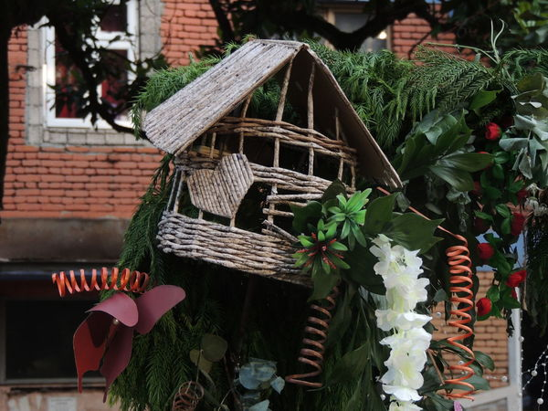 Architecture Art And Craft Basket Building Building Exterior Built Structure Close-up Creativity Day Decoration Flower Flowering Plant Focus On Foreground Growth Leaf Nature No People Outdoors Plant Plant Part