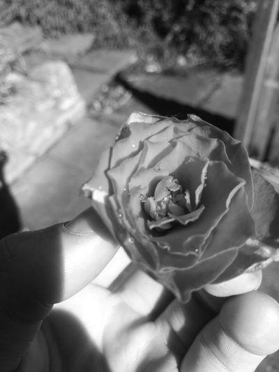 <3 Beauty In
