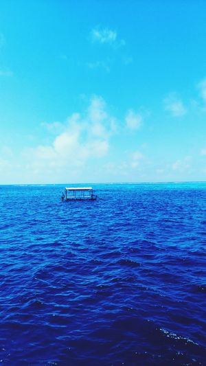 Blue Sea Water Rippled Tranquility Scenics Sky Waterfront Horizon Over Water Nature No People Beauty In Nature Idyllic Outdoors Tranquil Scene Refraction Day Travel Destinations Great Barrier Reef Reef Water Surface Kristinejensson Diving Boat Ride Boat
