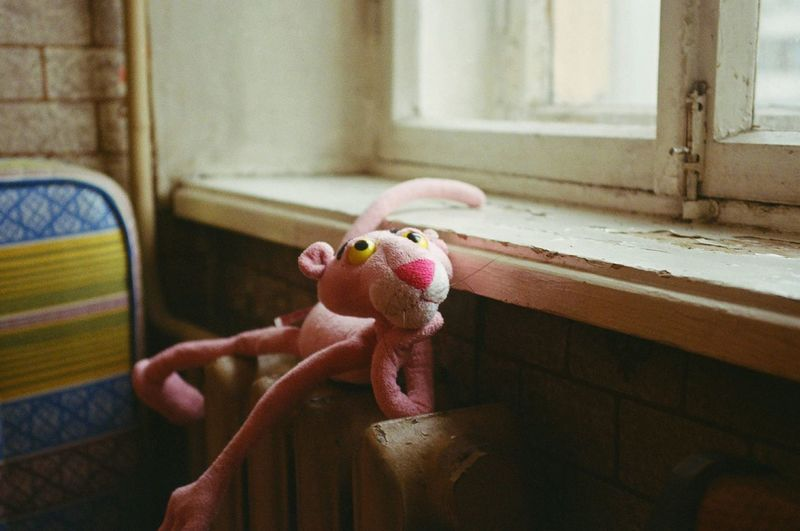 Indoors  Animal Themes No People Pets Warmth Kitchen Meditative Day Close-up Cage Morning Pink Panther Mood Toy Radiator Window Spring Smooth Light Sill Mattress Melancholy Millennial Pink EyeEmNewHere