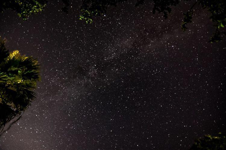 Stella Stelle  Star Stars Via Lattea Vialattea Cielo Sky Milkywaygalaxy Milky Way Milkyway