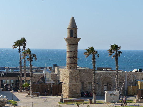 Architecture Beauty In Nature Blue Built Structure Caesarea's Antiquities Park Coastline Day Growth Horizon Over Water Israel Israeloftheday Nature No People Outdoors Palm Tree Scenics Sea Shore Sky Sunlight Sunny Tranquil Scene Tranquility Tree Water