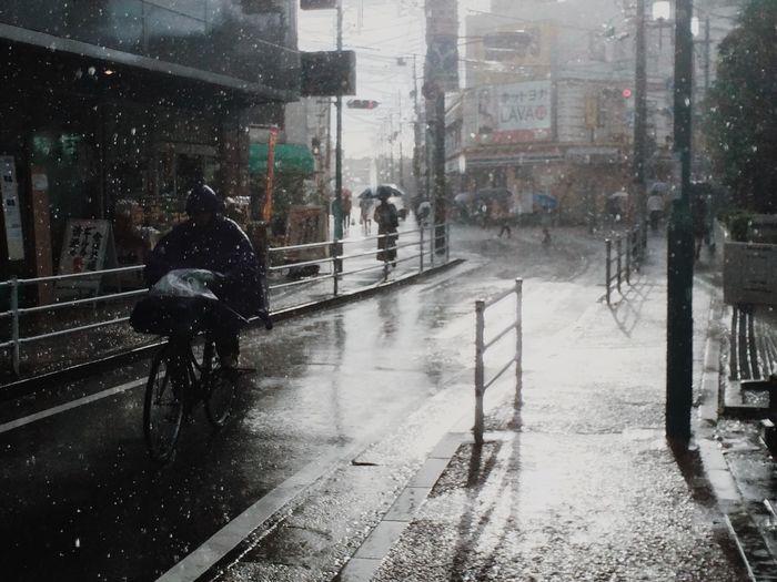Rain Typhoon