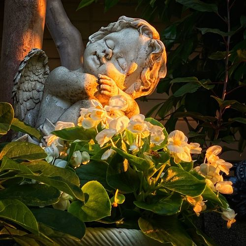 Close-up of angel statue by plants