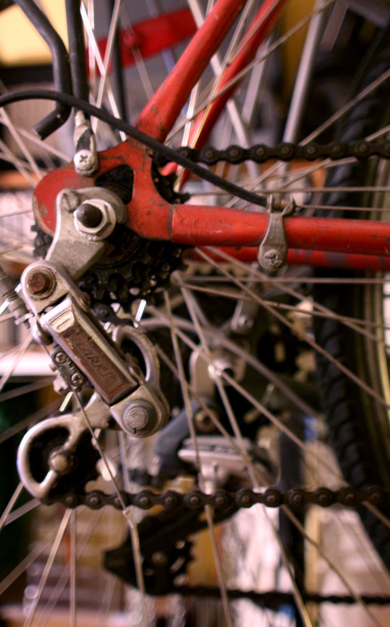 CLOSE-UP OF RUSTY BICYCLE ON CHAIN