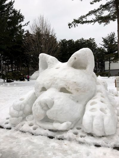 Dog's Year Yukiakari Chinese New Year uniqueness Tadaa Community White Snow Festival Snow Sculpture Dog Japanese Culture Tohoku Iwate Morioka Winter Cold Temperature Sculpture Statue Snow Tree White Color