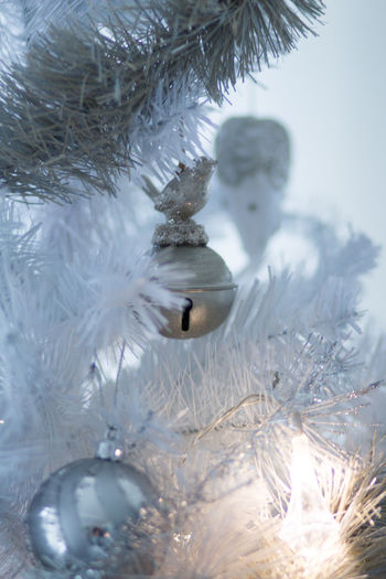 Cold Temperature Winter Snow Tree Close-up No People Nature Christmas Decoration Christmas White Color Holiday Frozen Plant Selective Focus Celebration Day Decoration Christmas Ornament Ice Softness