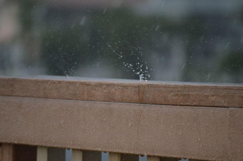 Close-up of raindrops during rainy season