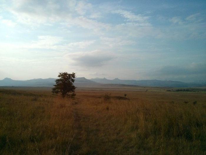 Masai Mara,