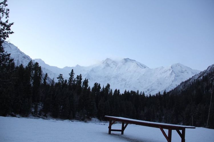 Mountains Killer Mountain Nanga Parbat Trees Trip With Friends Enjoying Life EyeEm Best Shots Chilling Snow