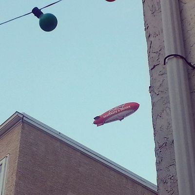 Gabe keep barking at this dam blimp Sillymexican with his Sillydog Madeinamerica