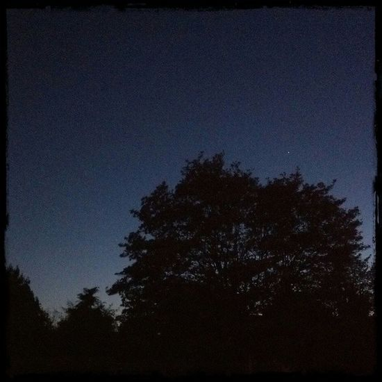 Night at my House Stars Peaceful Parkroseoregon DroidRazr
