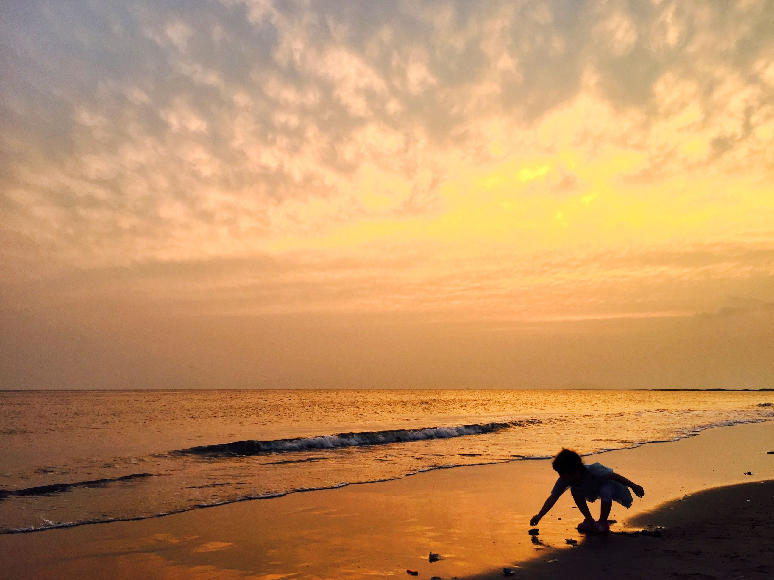 domestic animals, animal themes, beach, mammal, dog, sea, one animal, pets, sand, sky, horizon over water, shore, water, sunset, cloud - sky, full length, nature, scenics, tranquil scene, tranquility