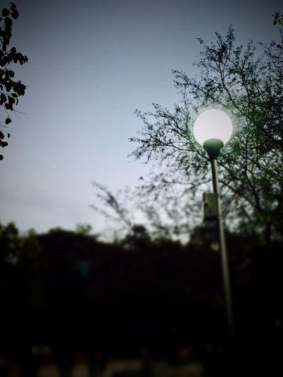 Hopeoflight Believe ★