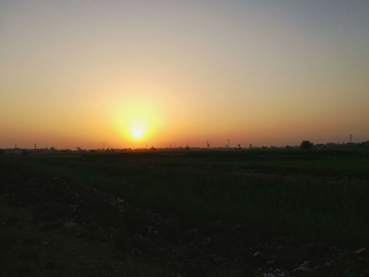 Sunset Landscape Beauty In Nature Sun Nature Scenics Field Tranquility Tranquil Scene Sky No People Silhouette Agriculture Outdoors Rural Scene Tree Clear Sky Day