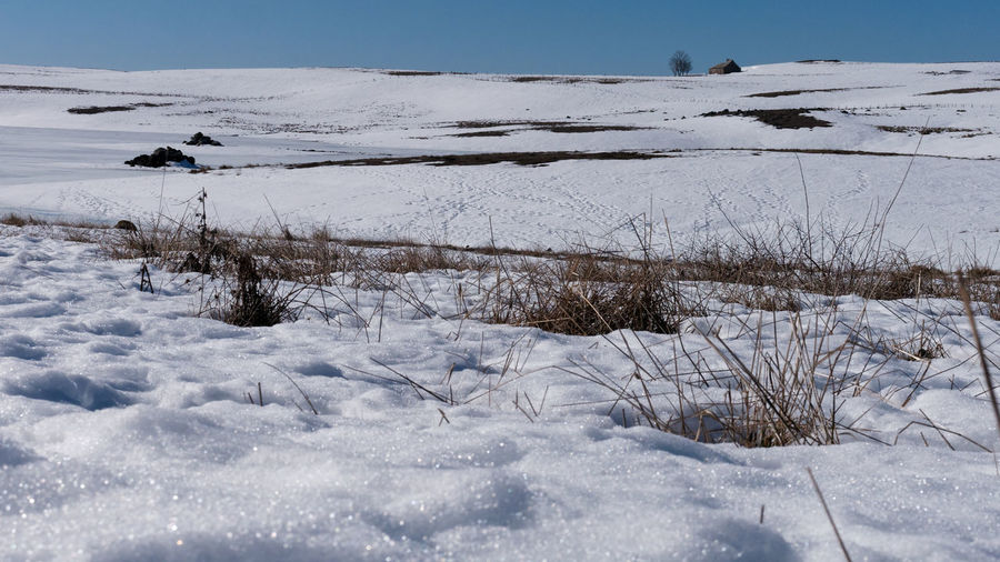 Winter Snow Cold Temperature Nature No People Day Tranquility Beauty In Nature Scenics - Nature Lake Aubrac Aveyron Landscape Landscape_Collection Blue Sky Outdoors Landscape_photography Beauty In Nature White White Color Winter Wild Nature Nature_collection Nature Photography Snowcapped Mountain Scenics Cold Days France Frozen Lake Tranquil Scene Land Plant Sky Field Environment Covering Non-urban Scene