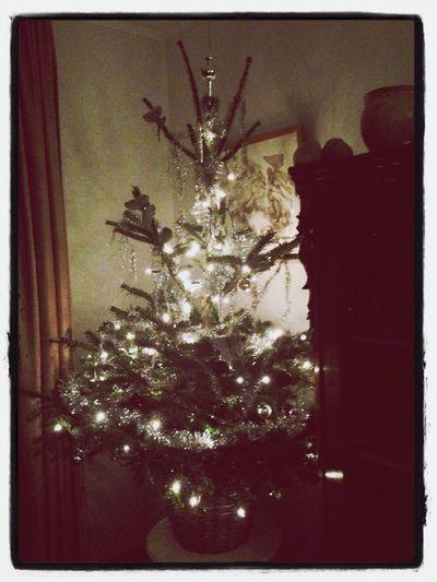 Kerstboom Kerst2013