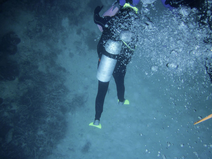 Low Section Of Man Scuba Diving Undersea