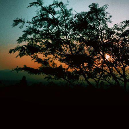Colours Of Nature Are Infinite. Vscocam Vscophile Vscogrid Everywherevsco Thesimilarthree