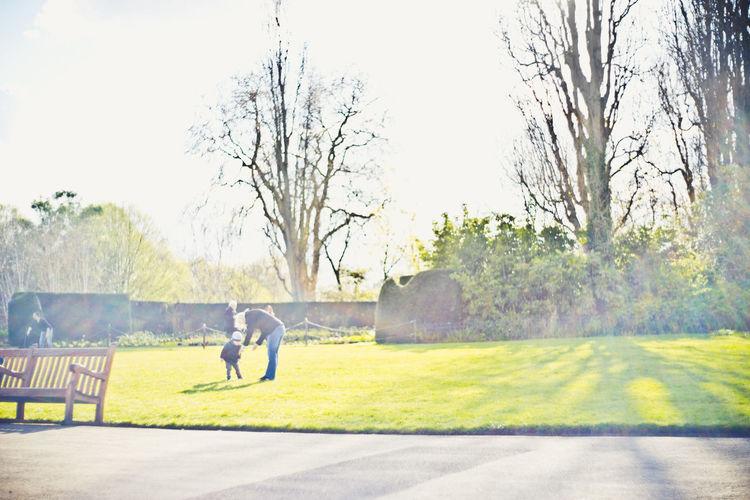 Day Grass Kid And Mom Kids Park Sunny Day Sunshine Tree