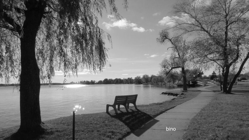 Out Walking At The Lake Tranquil Scene Relaxation No People Have A Seat Shadow Black And White Photography Lake Cadillac Pure Michigan
