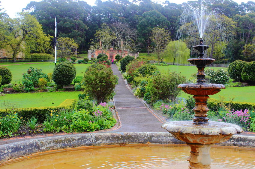 Australia Day Flower Fountain Fountain Garden Grass Green Color Growth Growth Idyllic Nature No People Outdoors Park Path Plant Port Arthur Spraying Tasmania TasmaniaAustralia Tree Water Way Forward Been There.