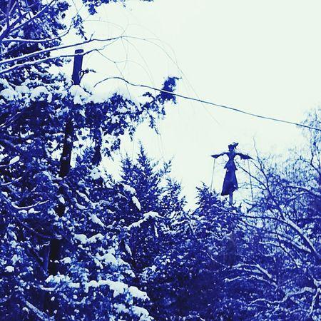 Kartopu Kurtuluş Parkı Kar Kardanadam