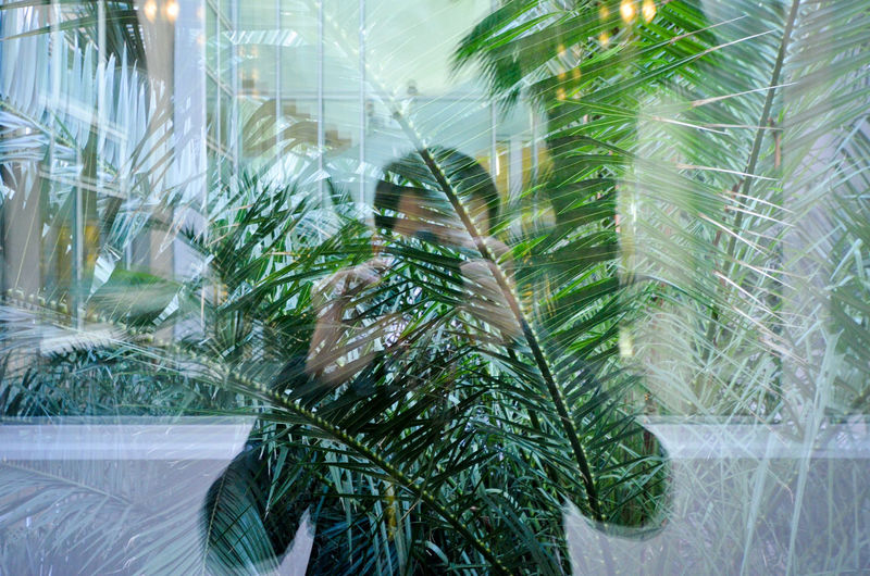 Multiple Exposure Of Man Photographing Amidst Palm Trees