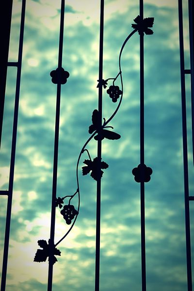 Home Is Where The Art Is Window ArtWork Welding Welded Art Guard Sky Sky And Clouds Interior Design Interior Living Window View Outside My Window Outside My Window Skylight Curved Steel Curves And Lines Butterfly Flowers Black And Sky Blackandwhite Grape