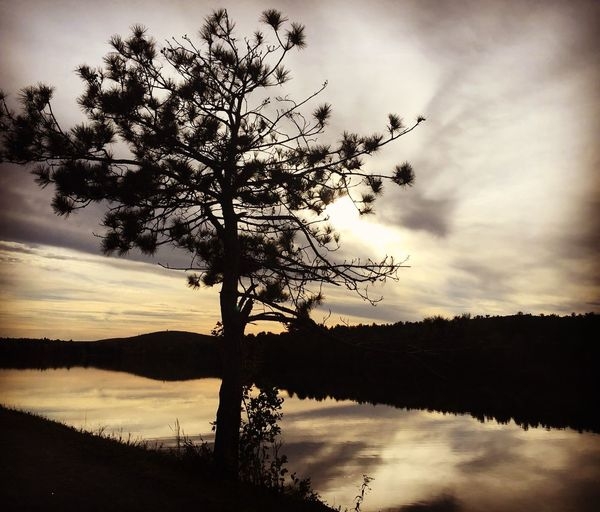 Autumn walk at the reservoir Tree Nature Beauty In Nature Sky Sunset Reflection Tranquility Scenics Water Outdoors No People