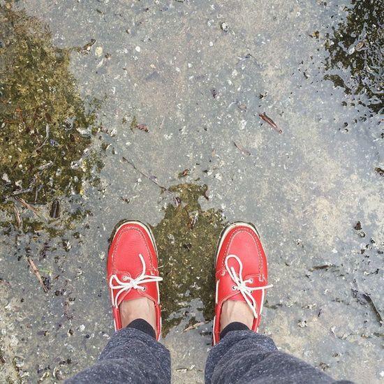 Instadaily ShoePorn