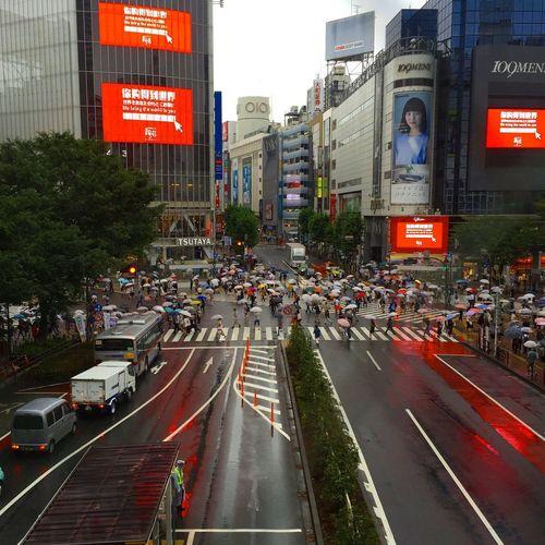 スクランブル交差点 Scramble Crossing Shibuya Tokyo Japan Rainy Day