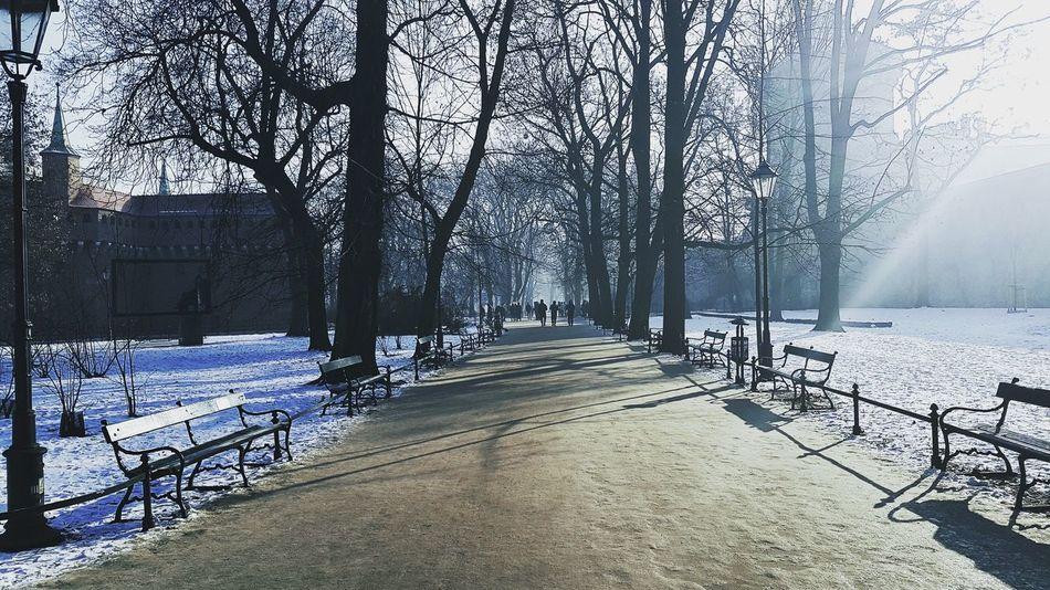 Krakow Krakow,Poland Poland Planty Park Winter Wintertime Icy Malopolska Europe Barbacan