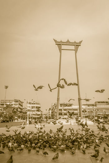 Vintage red giant swing or Sao Ching Cha with the crowd of pigeon, one of the most famous tourist attraction and landmark in Bangkok, Thailand. Giant Swing Giant Swing Bangkok Red Giant Swing Sao Ching Cha Sao Chingcha Tourist Attraction  Vintage Style Amusement Park Amusement Park Ride Animal Animal Representation Animal Wildlife Architecture Art And Craft Arts Culture And Entertainment Building Exterior Built Structure Carousel City Crowd Of Pigeon Day Giant Swing Fun Zen Landmark Landmarktower Nature No People Outdoors Representation Sky Tourist Attraction In Thailand Vintage Vintage Photo Water