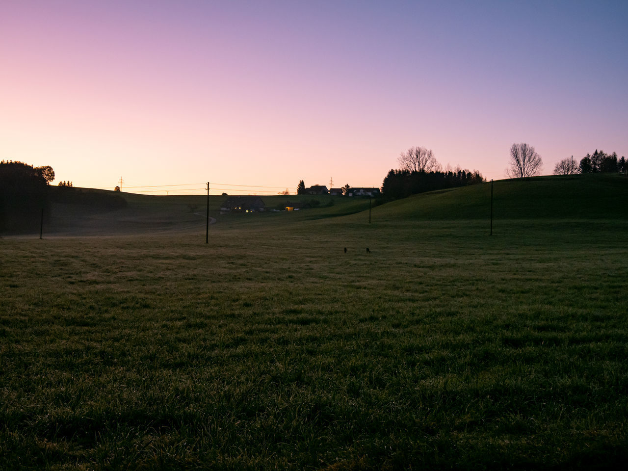 sky, sunset, grass, scenics - nature, beauty in nature, tranquil scene, plant, tranquility, landscape, environment, land, sport, green color, nature, field, no people, orange color, idyllic, non-urban scene, golf, outdoors