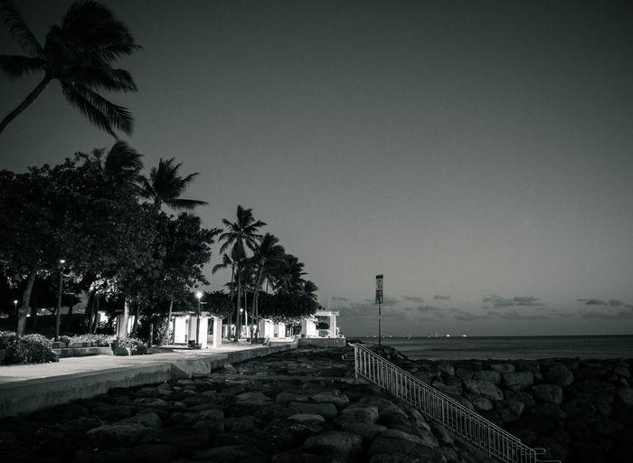EyeEm Best Shots - Black + White Honolulu, Hawaii Nightphotography Oahu, Hawaii Beachphotography Landscape EyeEm Best Shots - Sunsets + Sunrise Blackandwhite Luckywelivehawaii EyeEm Best Shots