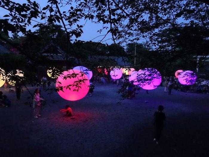 大村公園 チームラボのイベント?かな Omura, Nagasaki Japan