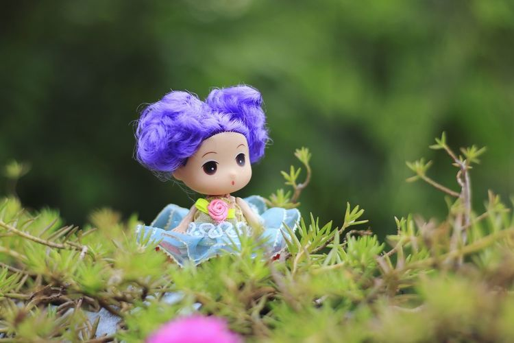 Took a girl sitting in a flower garden with beautiful nature. Teddy Dolls Dolls Faces Dolls Photography Dolls And Toys Wood Art Wooden Background Wooden Floor Wood Green Backdrop Background Blur Fowers Garden Stuffed Toy Childhood Doll Purple Close-up Grass Female Likeness Lamb Teddy Bear