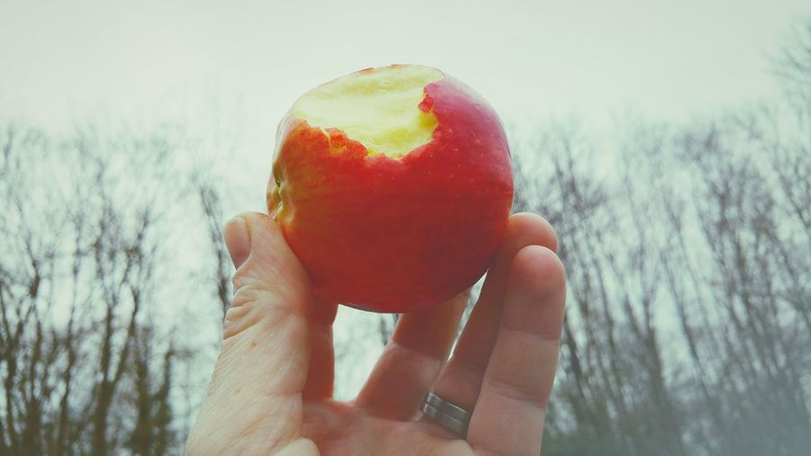 Cropped image of person holding eaten apple against sky