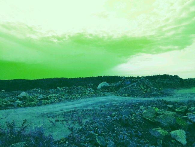 как вам? карелия путешествие отдых облака природнаякрасота природароссии Природа красота небо путь Travel карьер дерево трава удивительноерядом неожиданность камни Rural Scene Agriculture Tree Field Sky Landscape Cloud - Sky Green Color Farmland