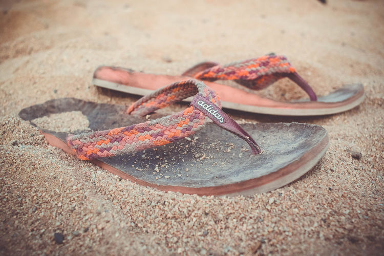 flipflops Animal Themes Beach Close-up Day Food Nature No People Outdoors Sand Sea Life
