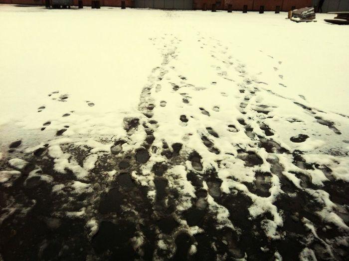 Uggly Snow
