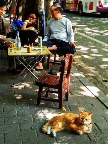 Pets Full Length Sitting Men