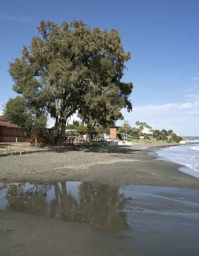 Governor's Beach Architecture Beach Beauty In Nature Day Nature No People Outdoors Sea Sky Tree Water